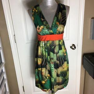 Anthropologie Eva Franco Oroya Cactus Dress Size 4